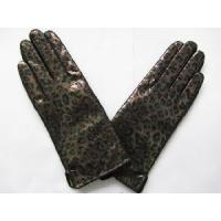 Buy cheap 2013 Hot Gloves Fashion Gloves Leather Gloves (HBF048) from wholesalers
