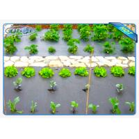 Eco-friendly 30gsm Black Color Non woven weed control fabric For Vegetables Manufactures