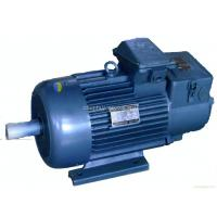 Standard Squirrel Cage Crane 3 Phase Asynchronous Motor , IP54 YZR Series Manufactures