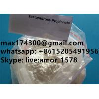 99.85% Purity Muscle Building Steroids , Raw Testosterone Propionate Powder Manufactures