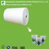 China single side PE coated paper cup paper on sale