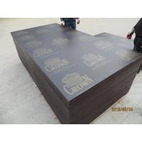 CROWN BRAND FILM FACED PLYWOOD, COMBI CORE, WBP GLUE。Professional CROWN  brand plywood with high quality Manufactures