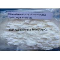 Bodybuilding Raw Steroid Powders Drostanolone enanthate CAS 472-61-145 Manufactures
