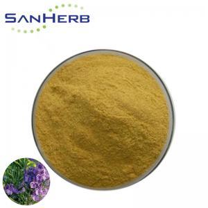 Natural Herb Extract Rosemary Extract Powder Rosmarinic Acid & Carnosic Acid Manufactures