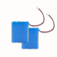 11.1V 2000mAh 18650 Battery Pack For Electronic Digital Product Manufactures