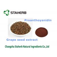 Quality Grape Seed Extract Antioxidant Dietary Supplement Fit Health Care Products for sale