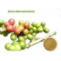 Green Coffee Bean Extract/Weight Loss Green Coffee Extract/Green Coffee Bean Extract Supplier Manufactures