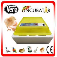 China 2014 CE approved full automatic mini 48 egg incubator solar eggs incubator for selling VA-48 on sale