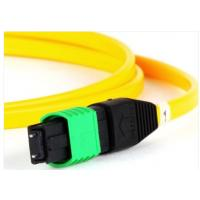 OS2 9/125 Single Mode Fiber Optic Patch Cord MTP Female To Female 12 Fibers Manufactures