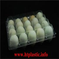 PET  egg box /Egg carton packing Manufactures