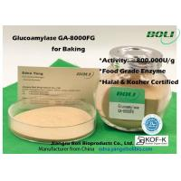 China High Concentrated Powder Glucoamylase Enzyme GA - 8000FG 800000U / G For Food Indusry on sale