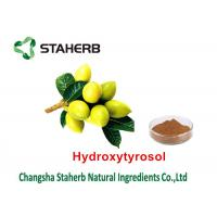 China Olive Leaf Herbal Plant Extract , Organic Herbal Extracts Solvent Extraction Type on sale