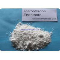 Safe Testosterone Enanthate Raw Testosterone Powder 250mg/ml Injection for Muscle Gain Manufactures