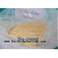 China Theacrine CAS 2309-49-1 Smart Drugs Anabolic Steroid Powder for Brain Improve Belongs to Nootropics on sale