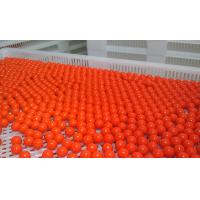 304 SUS Paintball Automatic Encapsulation Machine Manufactures