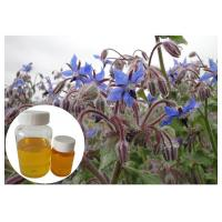 China Omega 6 Cosmetic Plant Extract , Borage Oil Supplement For Skin Disorder on sale