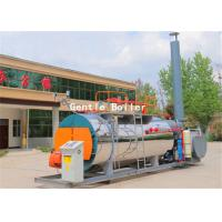 Skid Mounted Natural Gas Steam Boiler For Hotel And Bath Center Easy Installation Manufactures