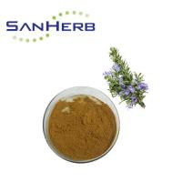 Natural High Purity Rosemary Extract Powder By Supercritical CO2 Extraction Manufactures