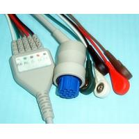 China Snap Type 10 Pin Datex 5 Lead ECG Cable With Leadwires High Density on sale
