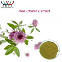 China 100% Natural Red Clover Extract Isoflavone 8% 20% 40% HACCP HALAL KOSHER on sale