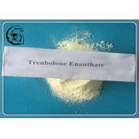 Trenbolone Enanthate Trenbolone Steroids 99% Muscle Growth CAS 472-61-546 Manufactures