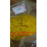 DNP Yellow Powder 2,4 - Dinitrophenol DNP Slimming Pills C6H4N2O5 Lose Weight Hormones Steroids Manufactures