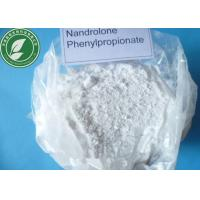 Durabolin Steroid Powder Nandrolone Phenylpropionate For Muscle Growth Manufactures
