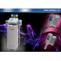 China Factory direct sale cryolipolysis fat removal body shapping skin care system on sale