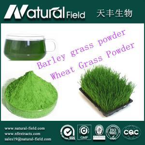 China 25:1organic barley grass juice powder on sale