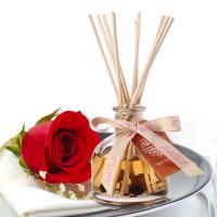 Aromatherapy Room Fragrance Diffuser Household Odor Removal Perfume Glass Bottle Manufactures