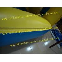 Reuseable 5ft Blueberry Fruit Shaped Balloons For Advertising , Inflatable Helium Balloon Ball