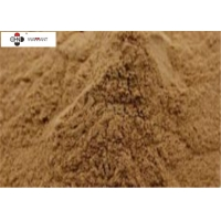 EP 8.0/EP Ginkgo Biloba Extract(GBE)powder Manufactures