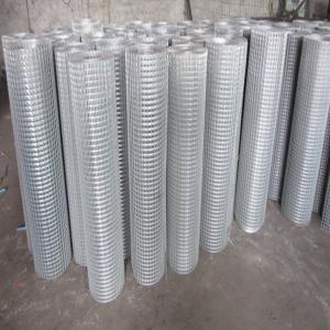 hot dip galvanized welded mesh supplier Manufactures