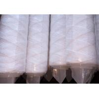 water filter,pp string wounding cartridge filter,pp yarn filter cartridge for nickel plating solution Manufactures