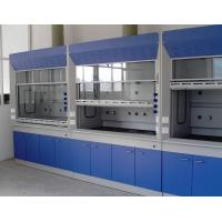 Platform Mounted Laboratory Fume Hood For Chemical Laboratory Perchloric Acid Manufactures