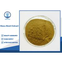 Male Sexual Enhancement Maca Root Extract / Yellow Brown Maca Root Powder Manufactures
