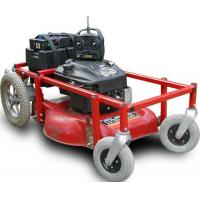 China petrol lawn mower on sale