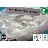 Raw Steroid Powder Testosterone Isocaproate For Muscle Gain CAS 15262-86-9 Manufactures