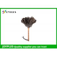 Professional Home Cleaning Tool Ostrich Feather Duster Bamboo Handle Manufactures