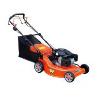 China 6 HP Cylinder Petrol Lawn Mower Garden Portable Lawn Mower With B&S or Honda Engine on sale