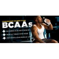essential amino acids for your muscle, BCAAs for bodybuilding, BCAA 2:1:1 Manufactures