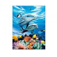 Living Room Decoration 3D Lenticular Photography Sealife Dolphin Images With Deep Effect Manufactures