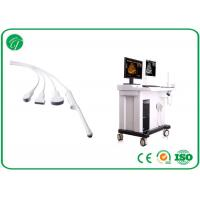 China LCD Monitor Trolley Ultrasound Scanner , Medical Ultrasound Machine With Workstation on sale