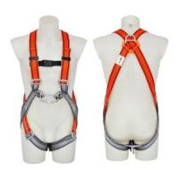 Safety Harness - 2 D Ring, Model#DHQS102 Polyester Manufactures