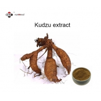Buy cheap Anti Arrhythmic Herb Extract Powder Kudzu Extract Pueraria Lobata from wholesalers