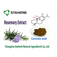 Natural Rosemary Leaf Extract Antioxidants Carnosic Acid 5-90% Good Oil Souble Food Additive Manufactures