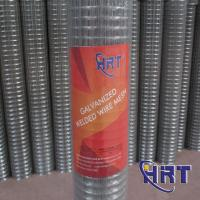 China Galvanized Welded Iron Wire Mesh (Manufacturer) on sale