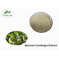 Food Grade Garcinia Cambogia Extract 60% Hydroxy Citric Acid Pure Plant Extract Manufactures