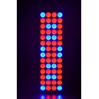120w 5FT Hydroponic Led Grow Light For Medical Plant / 2 Years Warranty Manufactures