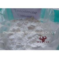 Infertility Treatment Strongest Testosterone Steroid Injectable Testosterone Cypionate Steroid CAS:58-20-8 Manufactures